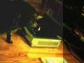 Gato domina consola de jogos